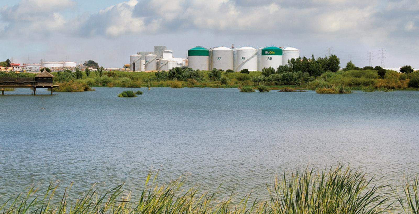 BioOils_Biodiesel_Production_Plant_EPC_IDOM_00