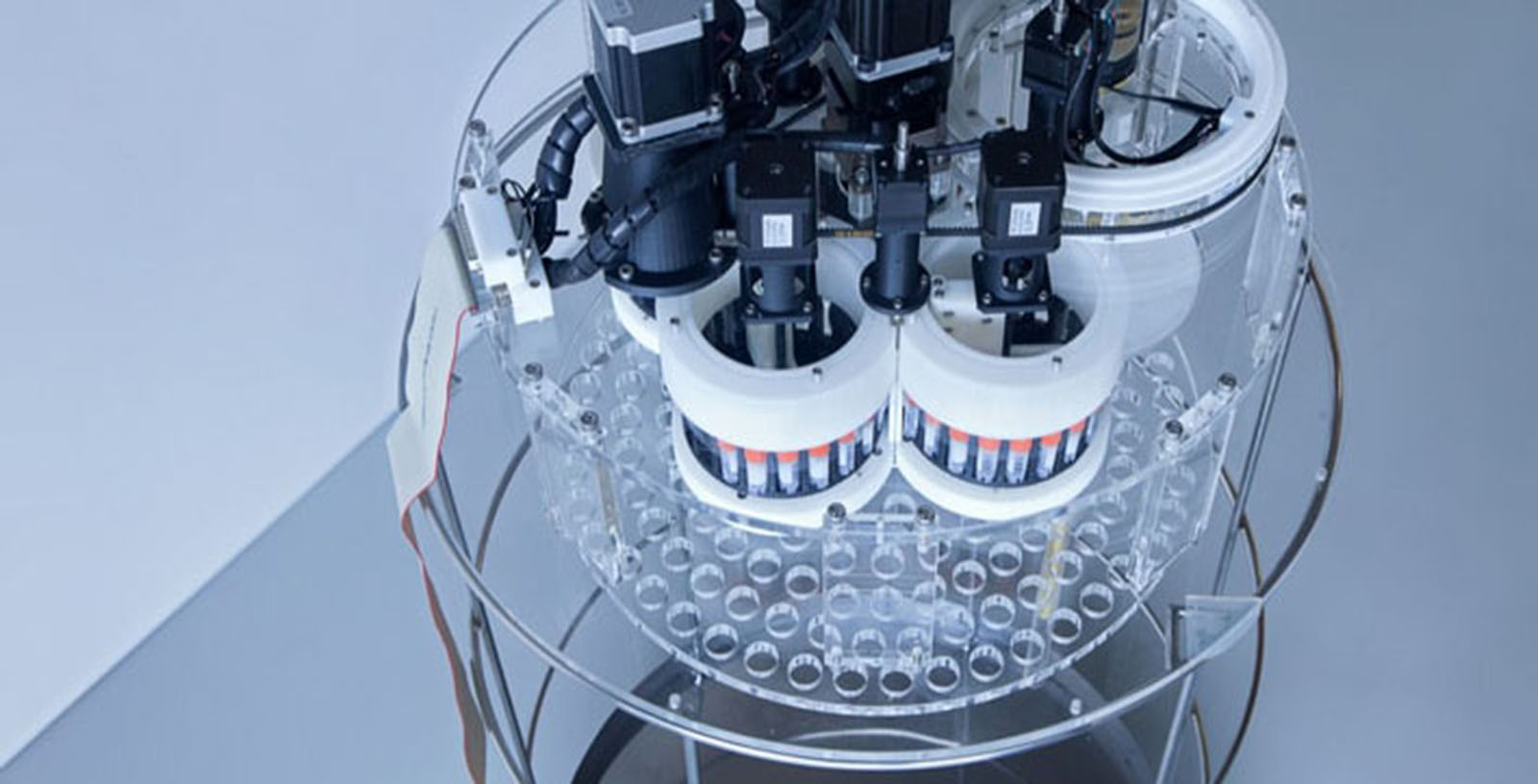 Cryopreservation_Tissue_Cell_Therapy_Bilbao_ADA_Idom__4_