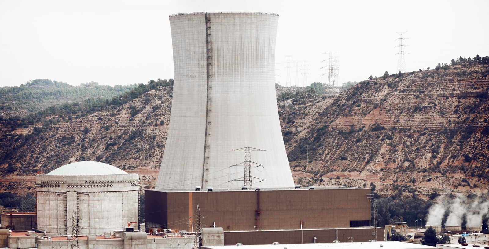 Idom_Nuclear_Services_Dismantling_Boilers_Asc__Nuclear_Power_Plant_ANAV_Alfonso_Calza