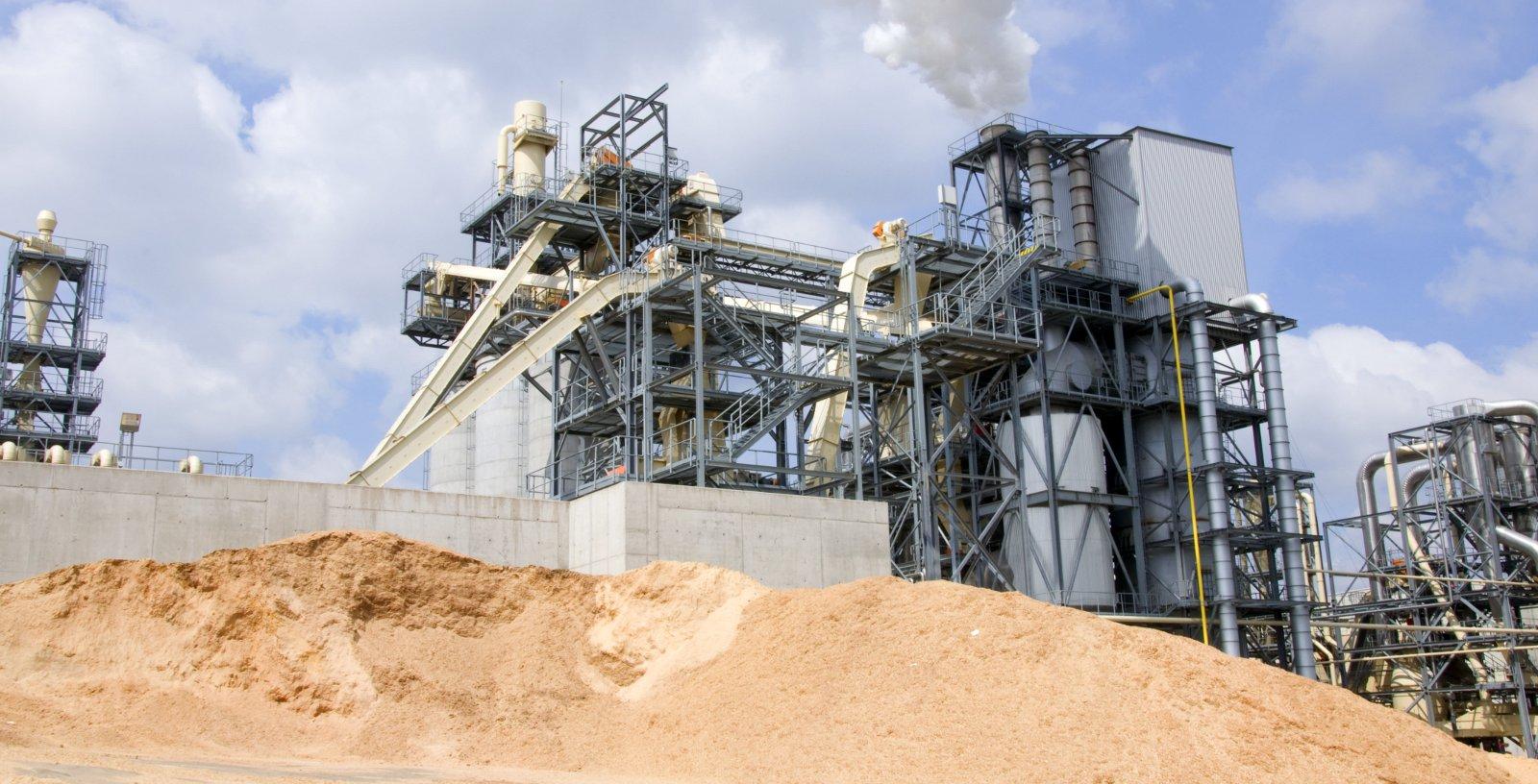 15-16_MWe_Biomass_Plants_IDOM