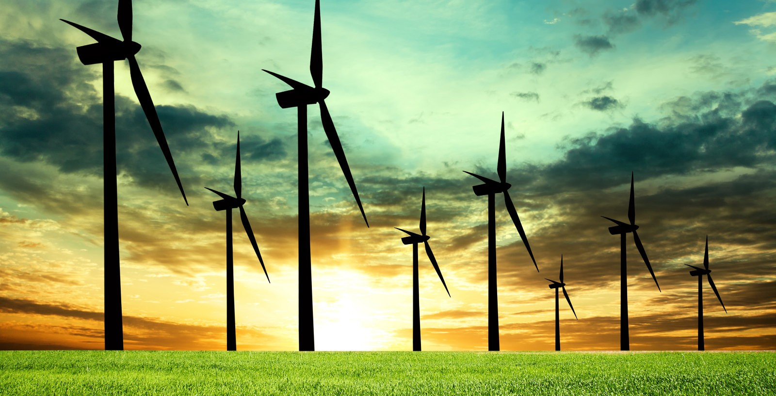 Wind_Farm_Zlotoryja_ENHOL_IDOM