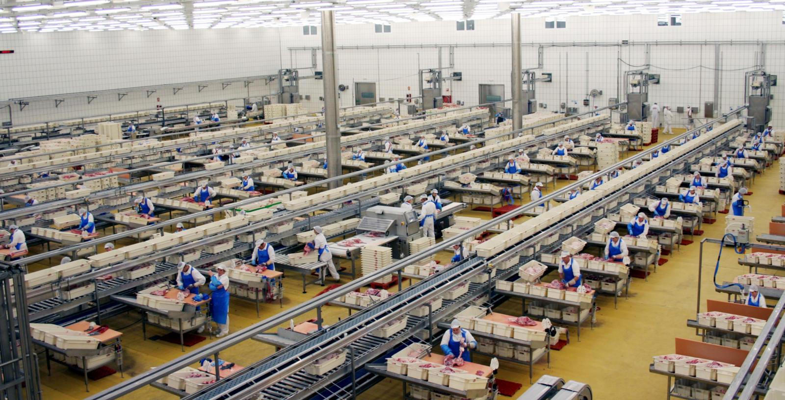 Sala de despiece fábrica El Pozo