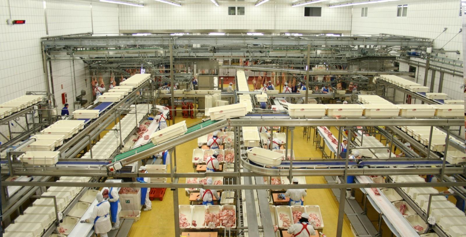 Meat_Manufacturing_Plants_Spain_El_Pozo_IDOM_02